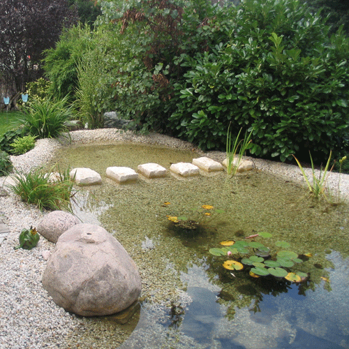 Gartenbau kolbe thema wasser for Tondichtung teich